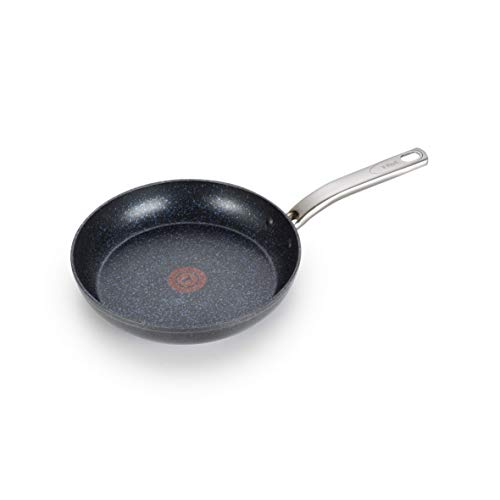 T-fal G10405 Heatmaster Nonstick Thermo-Spot Heat Indicator Fry Pan Cookware, 10-Inch, Black - As Seen on TV