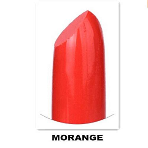 Matte Lipstick Makeup Lipstick Mate Lip Stick Beauty Cosmetics Lipsticks Makeup For Women A20 morange by MEZHLZ