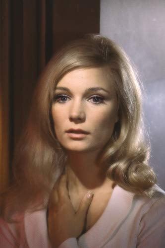 yvette mimieux motheryvette mimieux today, yvette mimieux images, yvette mimieux photos, yvette mimieux husband, yvette mimieux time machine, yvette mimieux bio, yvette mimieux mother, yvette mimieux imdb, yvette mimieux height, yvette mimieux dr kildare, yvette mimieux interview, yvette mimieux hit lady, yvette mimieux parents, yvette mimieux yoga, yvette mimieux autograph, yvette mimieux love boat, yvette mimieux howard ruby, yvette mimieux net worth, yvette mimieux joy in the morning, yvette mimieux swimsuit