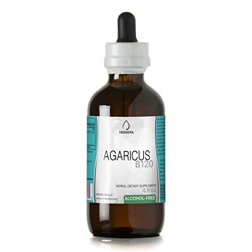 Agaricus B120 Alcohol-Free Herbal Extract Tincture, Organic Agaricus (Agaricus Bisporus, Champignon) Dried Mushroom (4 fl oz)
