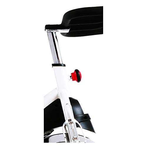 Sunny Health & Fitness SF-B1509 Belt Drive Premium Indoor Cycling Exercise Bike, White