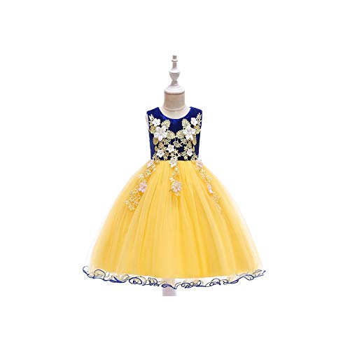 (Girls Embroidery Princess Party Costume Kid Dresses for Girl Girl Dress,Blue1,8T)