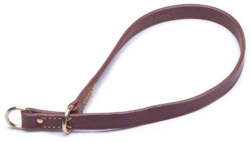 Petego La Cinopelca Classic Leather Smooth Finish Flat Collar, Brown, 3/4 Inches, Fits 17 Inches to 20 Inches