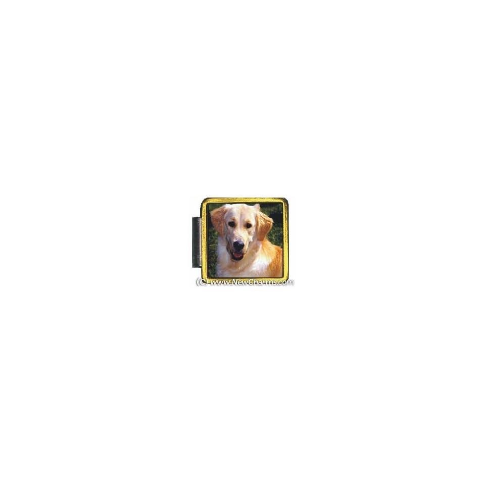 Golden Retriever Dog Gold Trim Italian Charm Save Bracelet Jewelry Link X018Gold
