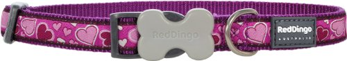 Red Dingo Designer Dog Collar, Large, Breezy Love Purple