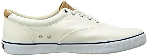 Striper Washed White Laceless Twill Salt Homme Baskets Sperry dAwfxqdY