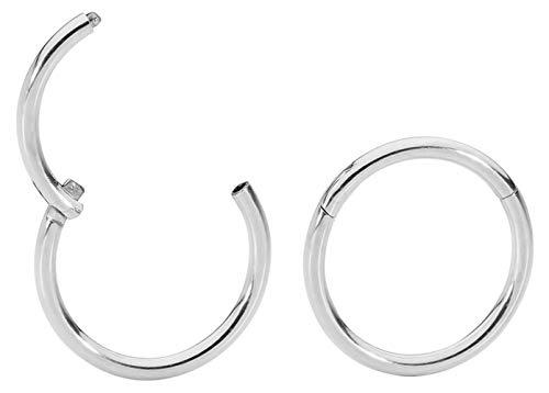365 Sleepers 1 Pair Stainless Steel 20G (Very Thin) Hinged Segment Ring Hoop Sleeper Earrings Body Piercing 5mm / 6mm / 7mm / 8mm (10mm Steel) from 365 Sleepers