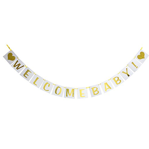 Hatcher lee Welcome Baby banner - Hanging Pennant