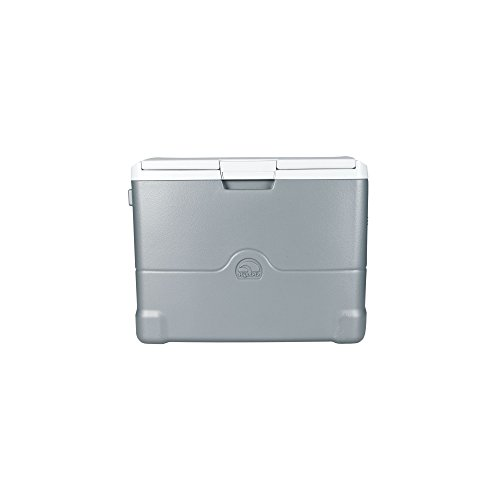 (Igloo Iceless Thermoelectric 40 Quart Cooler, Silver)