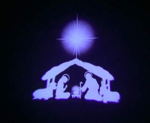 Outdoor Religious Christmas Lights in US - 2
