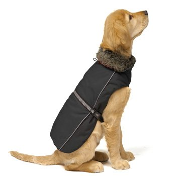 Dog Gone Smart Aspen Parka Black Dog Jacket, 14-Inch, My Pet Supplies