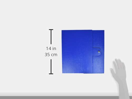 Esselte Cartelle a scatola Eurobox Verde Carpeta Verde, 10 cm, 250 mm, 350 mm
