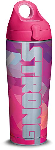 Tervis 1315349 Strong Ribbon Stainless Steel Insulated Tumbler with Passion Pink Lid, 24oz Water Bottle, Silver