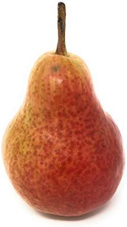 Pear Comice Red Organic, 1 Each