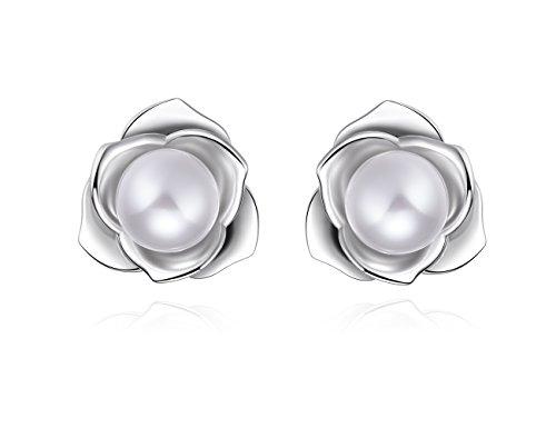 Platinum Polished Earring -