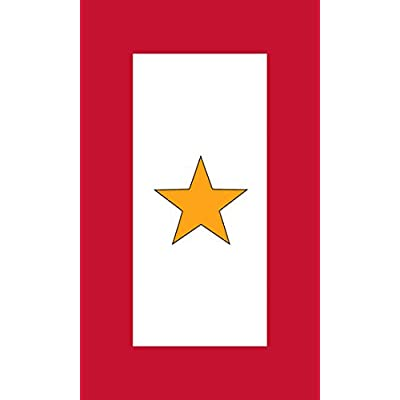 American Vinyl 1 Gold Star Military Service Flag Sticker (gave All one Served): Automotive