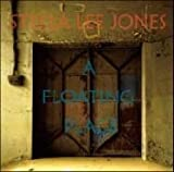 A Floating Place by Stella Lee Jones (2011-08-03)