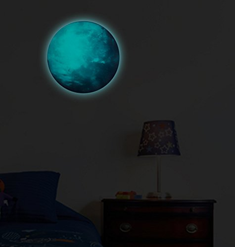FLY SPRAY 30CM Bedroom Glow in the Dark Blue Earth Light Luminous Wall Ceiling Stickers Removable Adhesive Wall Decal Baby Nursery - Frames Face Choosing For Shape