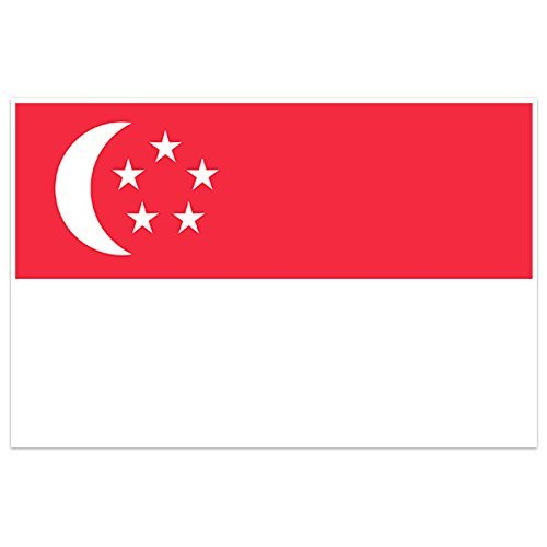 Singapore Country Flag Wall Art - Shipping Singapore Usps