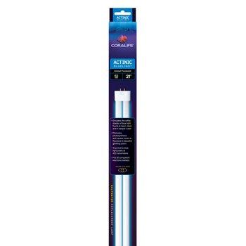 True Actinic 03 Blue Compact Fluorescent Lamp