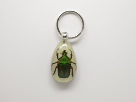 Lucite Treasures Glowing Unicorn Green Rose Chafer Beetle Keychain ()