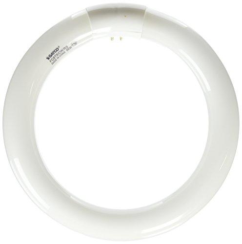 Satco S6500 4100K 22-Watt 4 Pin T9 Circline Lamp, Cool White (Bulbs Satco Circline)