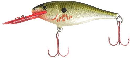 Rapala Shad Rap 07 Fishing Lure  Bleeding Olive Flash  Size  2 75