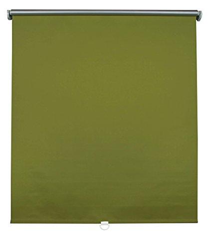 Prakto 8755 Rollo Clever spring  Thermo Verdunklung  60 x 175 cm, grün 3010