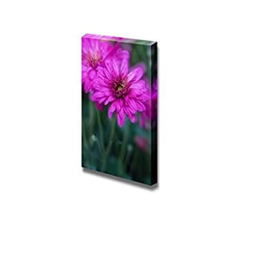 Canvas Prints Wall Art - Closeup of a Daisy Beautiful Flower Photograph | Modern Wall Decor/Home Decoration Stretched Gallery Canvas Wrap Giclee Print & Ready to Hang - 24
