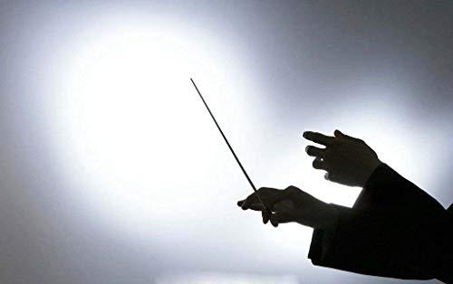 Music Baton Orchestra Baton Band Conducting Baton with Tube Sleeve (Rosewood Handle) by MOREYES (Image #6)