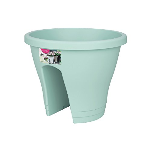 Exaco Flower Mint Corsica Flower Bridge Planter, Mint, 2 Per ()