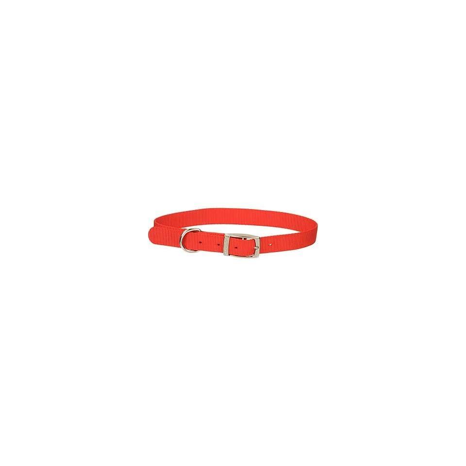 1 Single Ply Nylon Dog Collar in Red