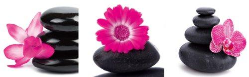 Цвет: впечатления дзен в розовом