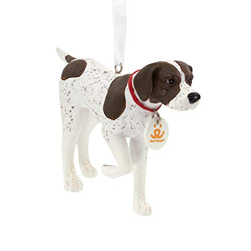 - Hallmark Christmas Ornaments, German Shorthaired Pointer Dog Ornament