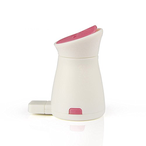 OMG_Shop 1pcs Cute Little Penguin Mini Portable USB Charging Ultrasonic Air Humidifier Mist Maker (Pink)