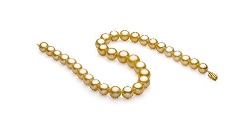 Or 11.53-15.2mm AAA+-qualité des Mers du Sud 585/1000 Or Jaune-Collier de perles