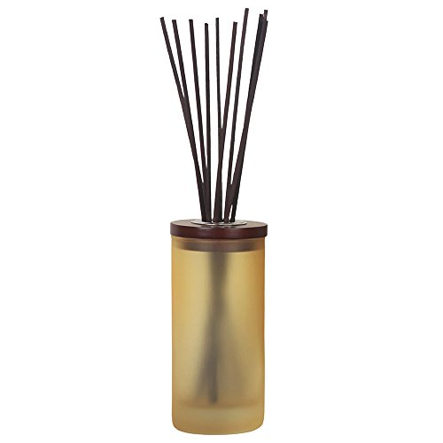 Chesapeake Bay Candle Mind   Body Collection Reed Diffuser  Strength   Energy