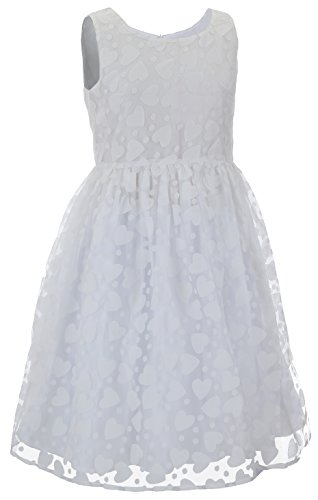 Emma Riley Girls' Heart Party Dress 8 (Girls In Sheer Dresses)