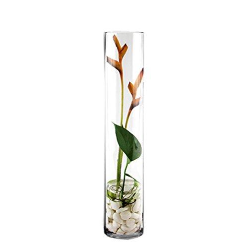 Vases Florist Glass (CYS EXCEL Cylinder Vase, H-20 D-4