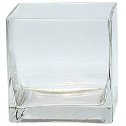 6-Pack Clear Square Glass Vase - Cube 4 Inch 4\