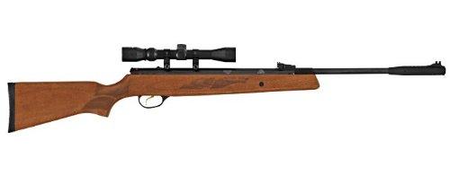 (Hatsan Model 95 Combo .22 Rifle, Walnut)