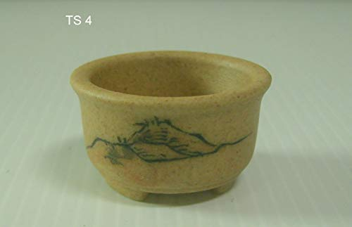 (Casavidas Seeds: Square 1.2 x 1.2 x 0.6 H inche: Tage Tokoname Shinto Bonsai Pot Signed Rired mid 1900s Hand Painted)