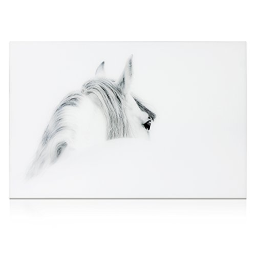 Empire Art Direct ''Blanco Mare Horse'' Frameless Free Floating Tempered Glass Panel Graphic Wall Art by Empire Art Direct