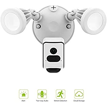 Amazon.com: Reflector Freecam de seguridad cámara Wifi con ...