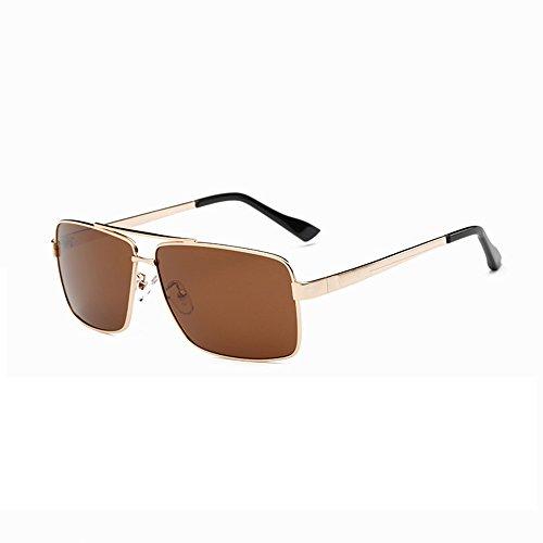 Hombre Montura Gafas Douerye de marrón Gafas Sol con de para Sol polarizadas polarizadoras Gafas Grande clásicas marrón de Sol polarizadas n88qxwWX