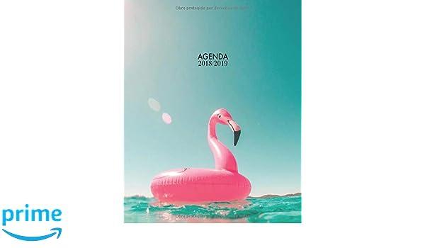 Agenda 2018-2019: Organizador y planificador con citas de inspiración, tamaño 20 x 25 cm, Diseño tropical flamingo verano piscina azul rosado paraíso ...