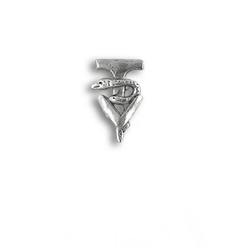 top Pewter Small Veterinary Technician Caduceus Lapel Pin by The Magic Zoo for sale