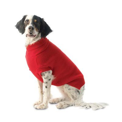 Baxter's Dog Sweater in Red - Small