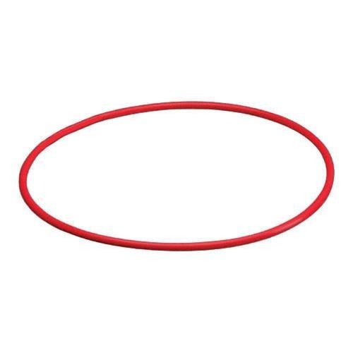 Olympus O-ring - 2