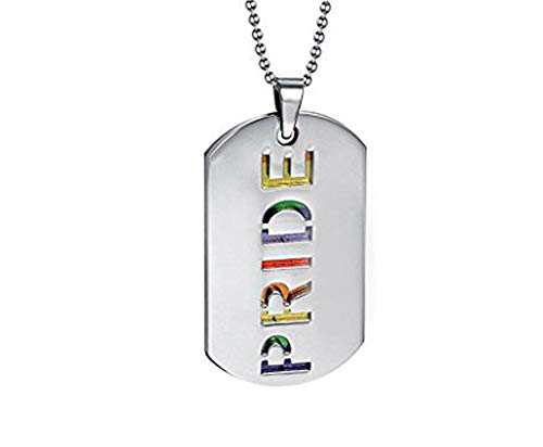 PAURO 2PCS Pride Rainbow Dog Tag LGBT Stainless Steel Jewelry - Gay and Lesbian Pride Pendant Necklace -